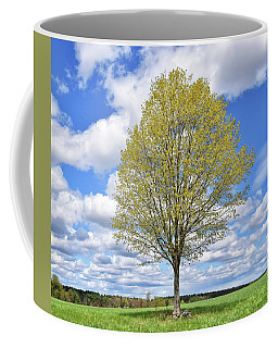 Loan Tree 3 Coffee Mug by Tricia Marchlik