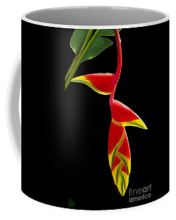 Lobster Claw Coffee Mug by Rand Herron