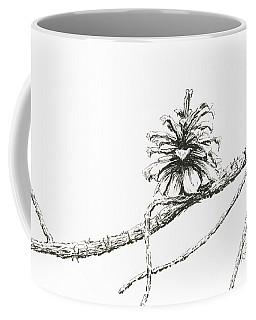 Lodgepole Pine Cone Coffee Mug