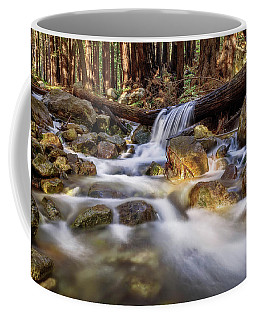 Log Falls On Limekiln Creek Coffee Mug