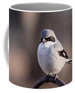 Loggerhead Shrike - Smokey Coffee Mug