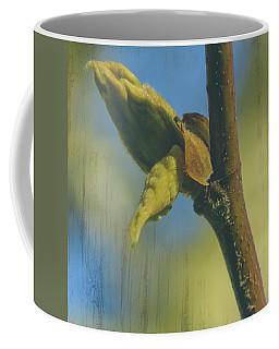 Coffee Mug featuring the photograph London Plane Buds B - Platanaceae Fine Art by Jacek Wojnarowski
