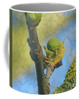 Coffee Mug featuring the photograph London Plane Buds D - Platanaceae Fine Art by Jacek Wojnarowski