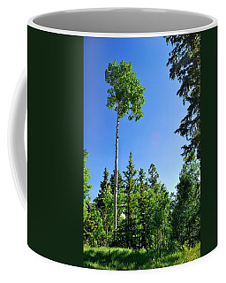 Lone Aspen Coffee Mug