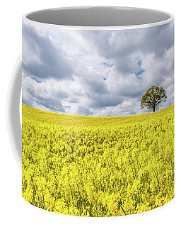 Coffee Mug featuring the photograph Lone Beauty by Nick Bywater