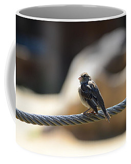 The Sentry Coffee Mug