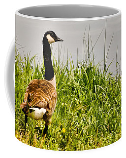 Lone Canada Goose - Loch Mary - Earlington Kentucky Coffee Mug