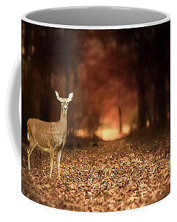 Coffee Mug featuring the photograph Lone Doe by Darren Fisher