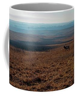 Lone Elk Coffee Mug by Jay Stockhaus