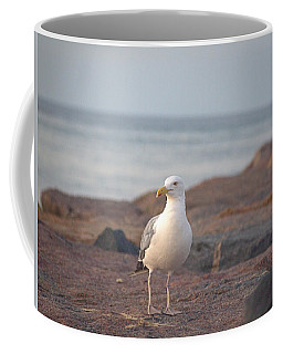 Coffee Mug featuring the photograph Lone Gull by  Newwwman