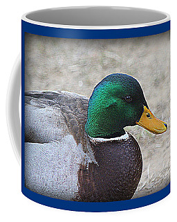 Coffee Mug featuring the photograph Lone Mallard Duck by Kathy White