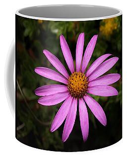 Lone Star Coffee Mug