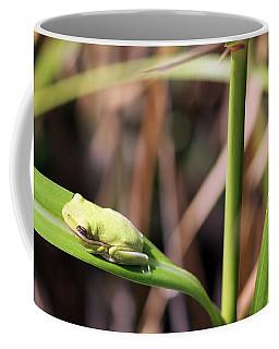 Lone Tree Frog Coffee Mug