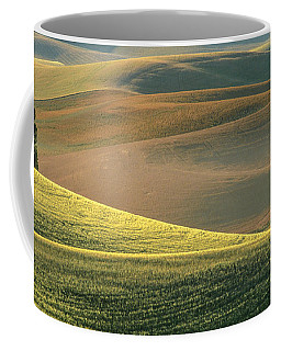 Lone Tree In The Palouse  Coffee Mug