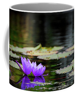 Lone Water Lilly Coffee Mug