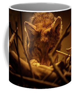Lone Wolf In The Museum Coffee Mug