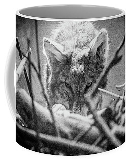 Lone Wolf Of The Smithsonian II Coffee Mug