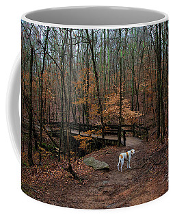 Lonely Hound Coffee Mug by Barbara Bowen