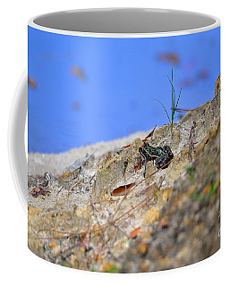 Coffee Mug featuring the photograph Lonely Leopard by Al Powell Photography USA