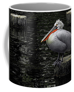 Coffee Mug featuring the photograph Lonely Pelican by Pradeep Raja Prints