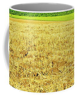 Coffee Mug featuring the photograph Lonely Tree And Stubble Filed by Silvia Ganora
