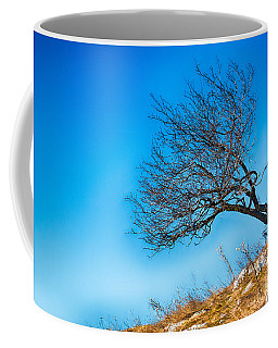 Lonely Tree Blue Sky Coffee Mug