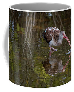 Long-billed Curlew - Male Coffee Mug
