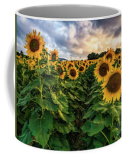 Long Island Sunflowers  Coffee Mug