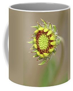 Long Stemmed Beauty Coffee Mug