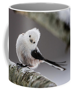 Long-tailed Look Coffee Mug