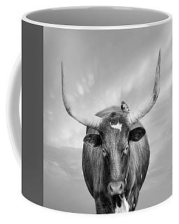 Coffee Mug featuring the photograph Longhorn Respite by Robin-Lee Vieira
