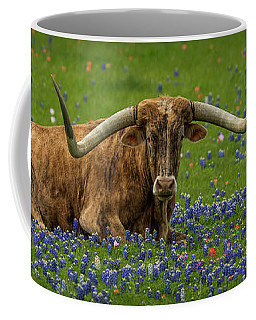 Longhorns And Bluebonnets Coffee Mug