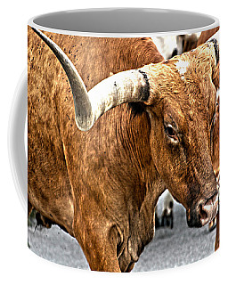 Longhorns Coffee Mug