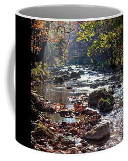 Longing For Home Coffee Mug by Karen Wiles