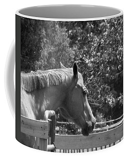 Coffee Mug featuring the photograph Longing by Sandi OReilly