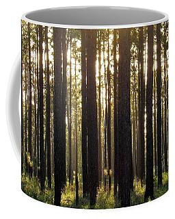 Longleaf Pine Forest Coffee Mug