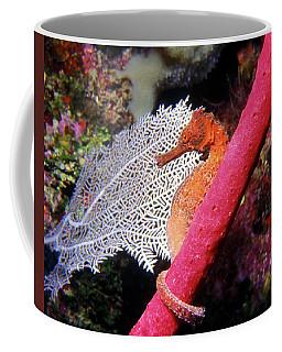 Longsnout Seahorse, Roatan, Honduras Coffee Mug