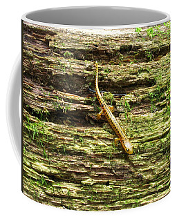 Longtailed Salamander Coffee Mug