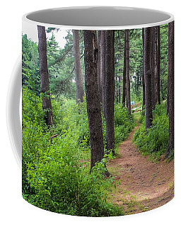Look Park Nature Path Coffee Mug