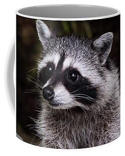Coffee Mug featuring the photograph Look Who Came For Dinner by Jordan Blackstone