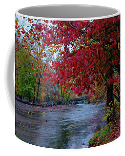 Looking Downstream Coffee Mug