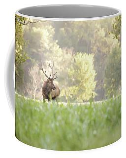 Looking For Love Coffee Mug