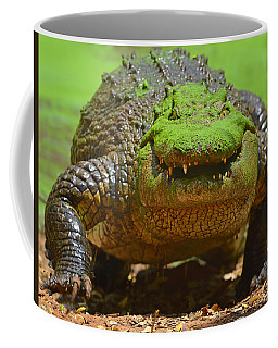 Looking For Lunch Coffee Mug