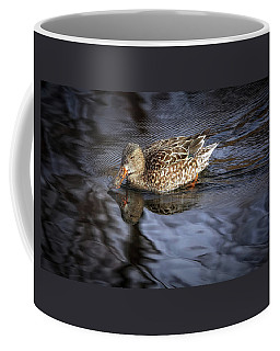 Coffee Mug featuring the photograph Looking Glass by Elaine Malott