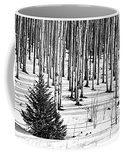 Looking Through The Aspen Black And White Coffee Mug