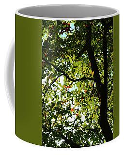 Looking Thru The Leaves Three Coffee Mug