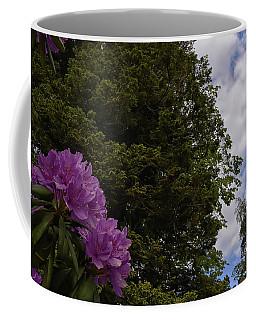 Looking To The Sky Coffee Mug