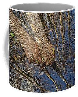 Coffee Mug featuring the photograph Looking Up While Looking Down by Debra and Dave Vanderlaan