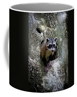 Lookout Coffee Mug