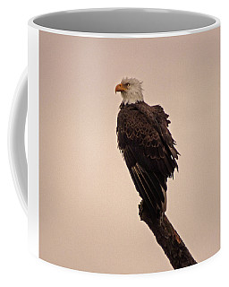 Coffee Mug featuring the photograph Looks Like Reign by Robert Geary